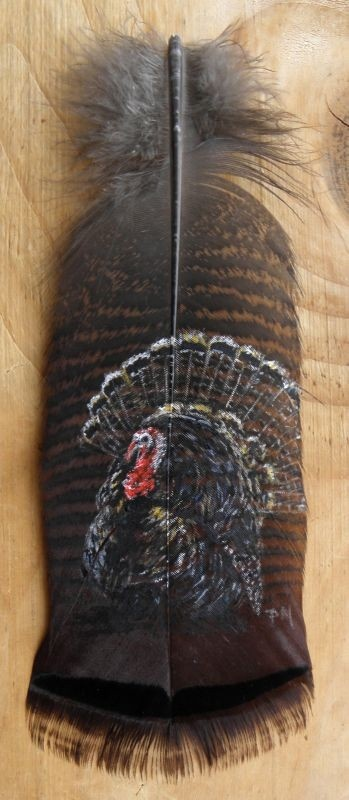 Tom Turkey Hand Painted Wild Turkey Feather, Framed