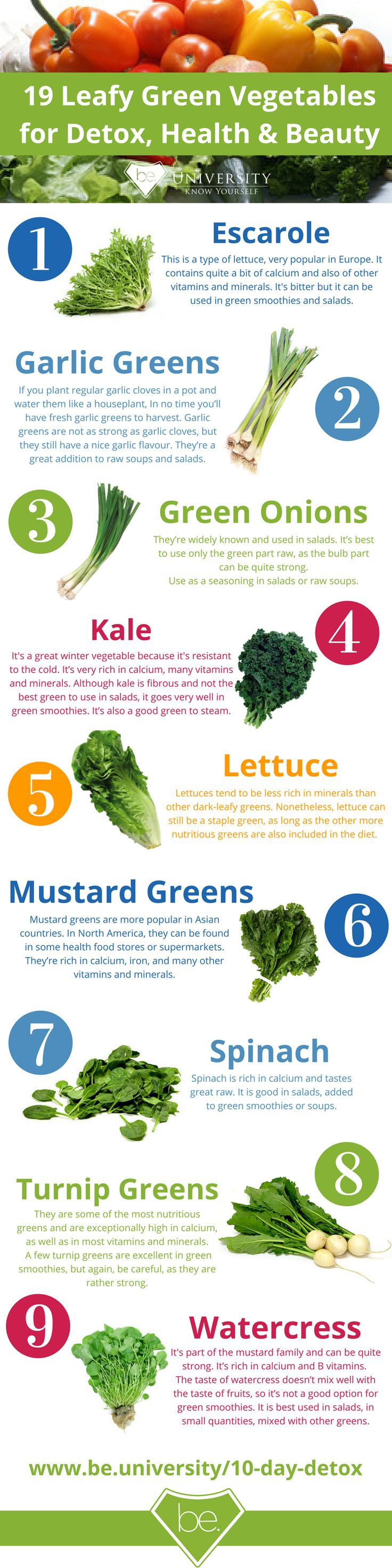 19 Leafy Greens (PART 2).png (800×3200)