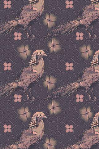 COLOURlovers.com-Ptak.png (320×480)