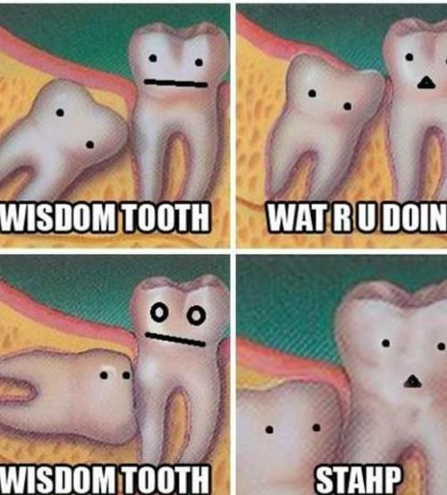 Wisdom teeth humour - oh my face hurts partly because it's funny the other because just removed all wisdom teeth
