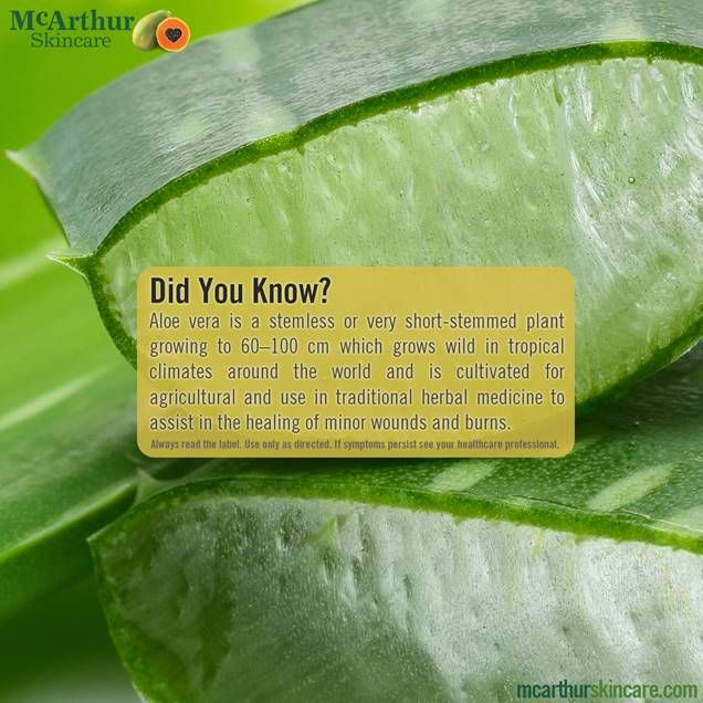 Did You Know? Aloe vera is a stemless or very short-stemmed plant growing to 60–100 cm which grows wild in tropical climates around the world and is cultivated for agricultural and use in traditional herbal medicine to assist in the healing of minor wounds and burns.  Visit our website at http://mcarthurskincare.com for more details.   Always read the label. Use only as directed. If symptoms persist see your healthcare professional.