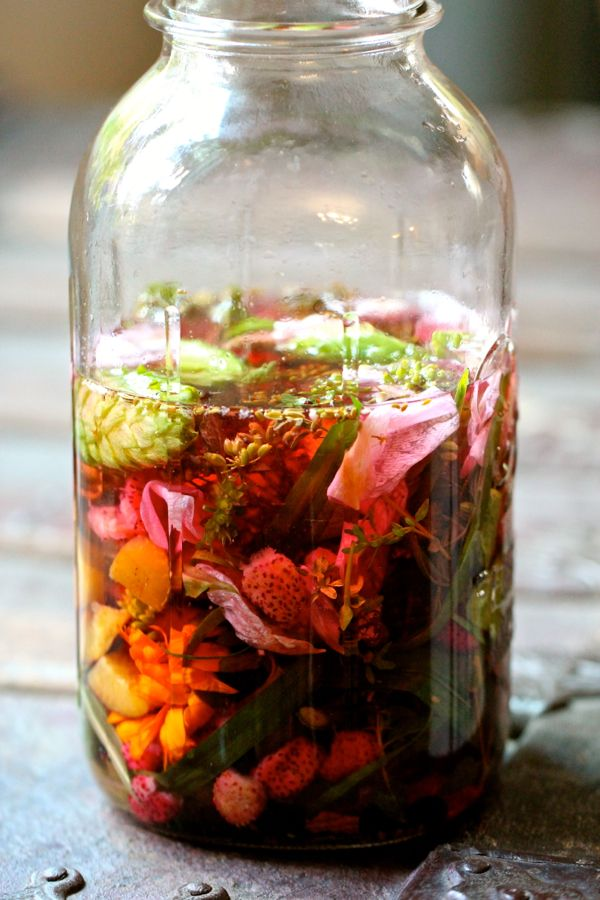 Summer Amaro ◾5 cups good quality vodka ◾alpine strawberries ◾anise hyssop ◾aronia berries ◾bay leaf ◾basil ◾basil mint ◾calendula ◾coriander seeds ◾fennel seeds ◾hops ◾lemon balm ◾lemon grass ◾lemon verbena ◾lovage seeds ◾marjoram ◾nigella seeds ◾golden oregano ◾pineapple sage ◾plum ◾rosemary ◾rose petals ◾sage ◾tarragon ◾thyme