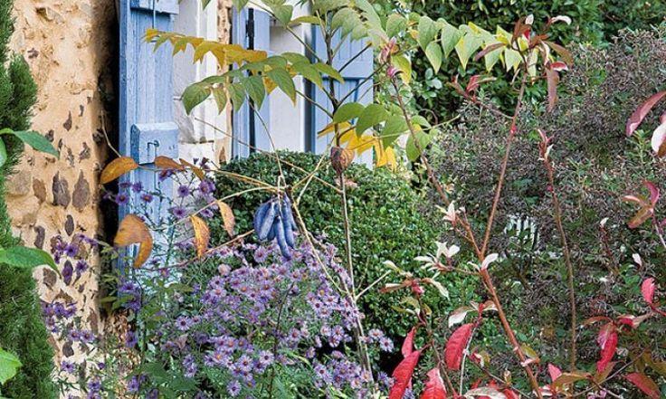 Que planter en septembre au jardin
