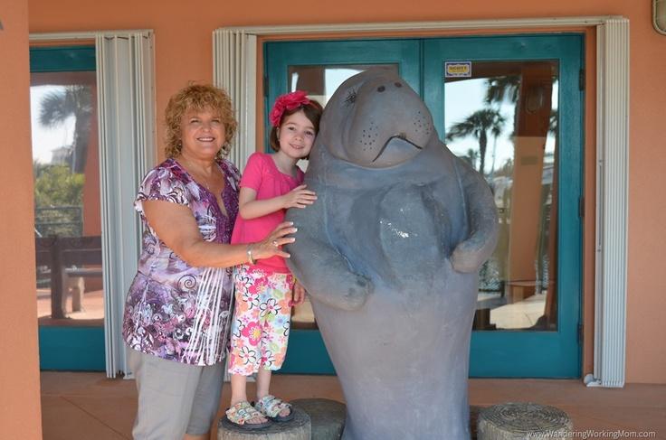 Florida's Treasure Coast with Kids - Manatee Observation and Education Center - Fort Pierce, Florida