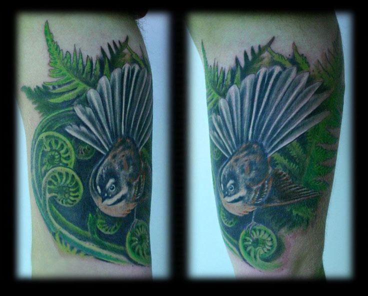 Custom Kiwiana New Zealand Fern Frond and Fantail Full Color Realism Inner Arm Tattoo Design_tattoo gallery