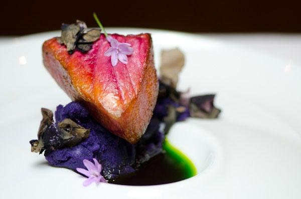 Seared Kra Kra (Fish from Easter Island) with Wild Herb Emulsion and Dehydrated Shamrock Soil at Borago.  Chef Rodolfo Guzmán  Boragó – Santiago, Chile