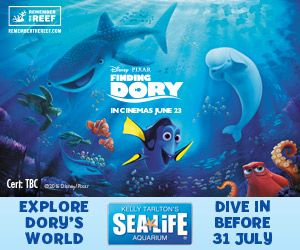 Finding Dory themed activities at Kelly Tarlton's