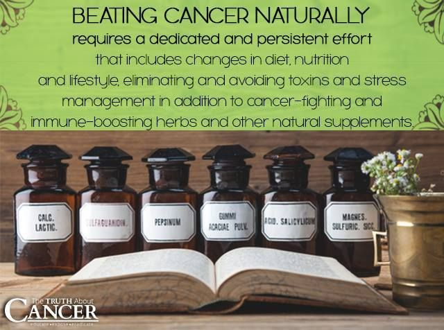 Beating cancer naturally requires dedication and persistence...and is SO worth it! That includes changes in diet, nutrition and lifestyle, eliminating and avoiding toxins and stress management in addition to cancer-fighting and immune-boosting herbs and other natural supplements. Please re-pin to support us on our mission to educate, expose, and eradicate cancer! // The Truth About Cancer