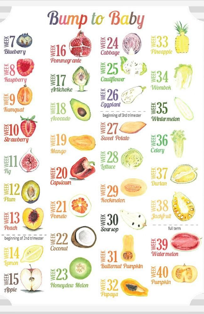 Best 25+ Baby size of fruit ideas on Pinterest Baby fruit size - baby size chart template