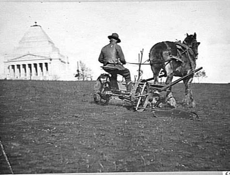Mowing grass at the Melbourne Shrine of Remembrance.