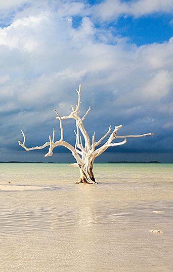 Harbor Island, Bahamas