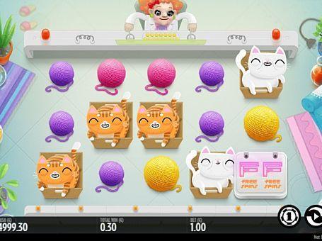 Ігровий автомат Not Enough Kittens з виведенням грошей  Головними героями апарату Not Enough Kittens стали кошенята. Цей автомат має 5 барабанів і 35 ігрових ліній. Регулярний виведення грошей з нього забезпечать спеціальні символи, фріспіни і особлива функція.