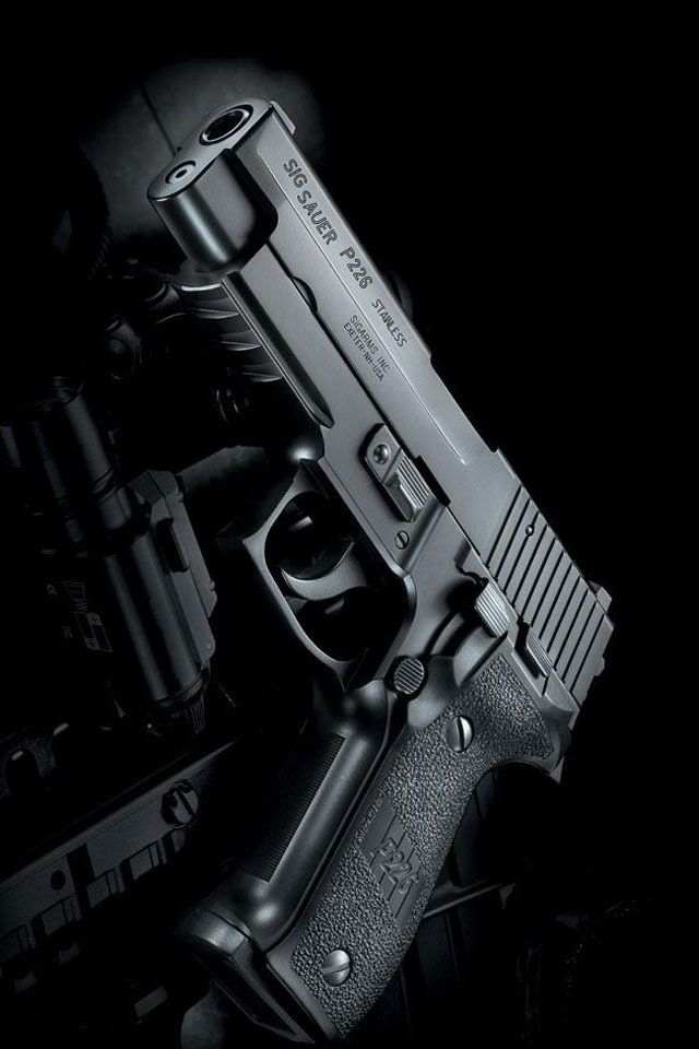 Sig Sauer P226 .40 AND Christmas is fast approaching.
