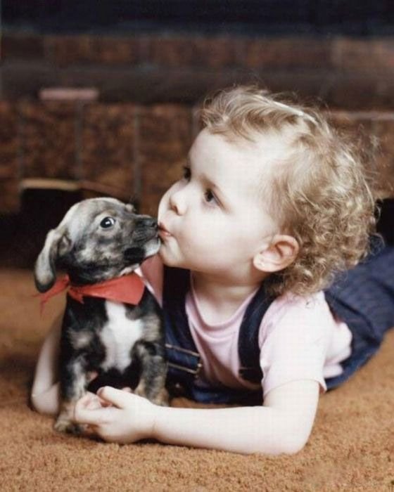 Best Children With Puppies Images On Pinterest Art Print - Cute portraits baby and rescue dog