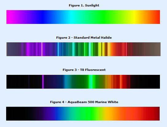 LED, T8, Metal Halide, Sun light through Spectroscope