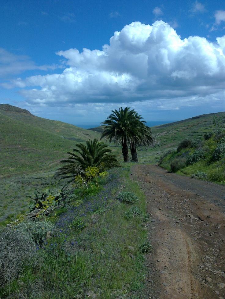 Valley in Lanzarote  Valle en Lanzarote  Tal in Lanzarote