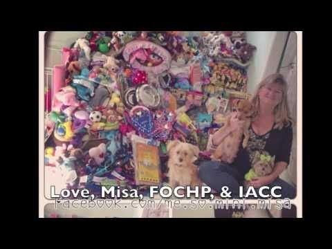 ▶ Misa Minnie's 1st Birthday Donation Delivery - YouTube