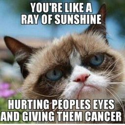 You're like a ray of sunshine... hurting people's eys and giving them cancer. #GrumpyCat