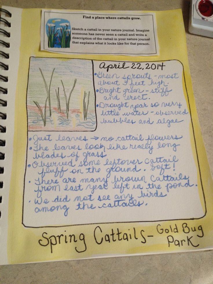 Nature Journal Quotes