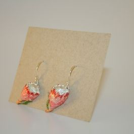 Small Pincushion Protea earrings - Jewellery - MzansiStore.com