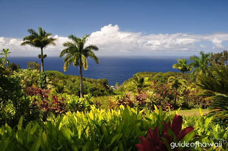 Garden of Eden Botanical Arboretum - Garden of Eden Overlook