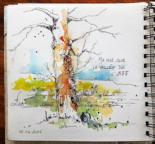 Colza Canola Watercolor And Ink Watercolor Sketchbook