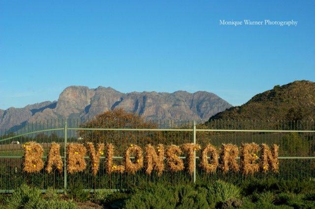 Darling Day Out: Babylonstoren on www.ohdarlingdays.co.za Photography by Monique Warner