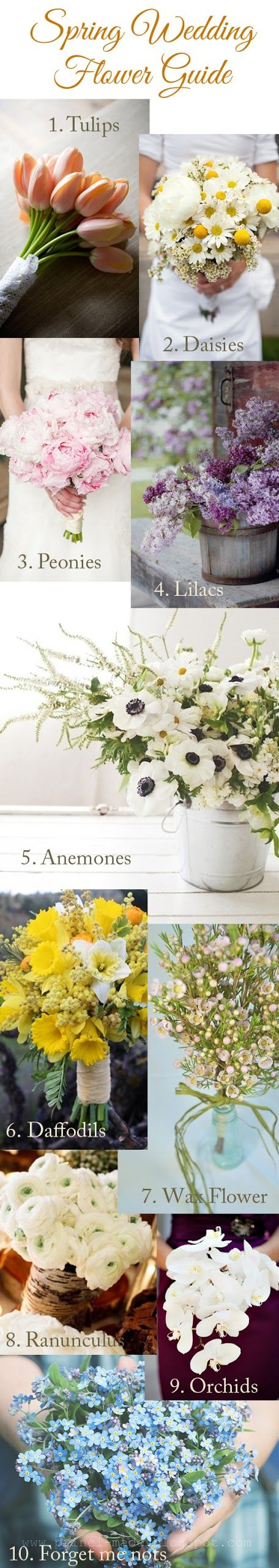 Getting married this spring? here's a a quick guide on blooms that are found during the season.