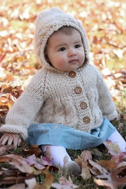 Ravelry: Fish Creek Hooded Baby Sweater pattern by Melissa Schaschwary