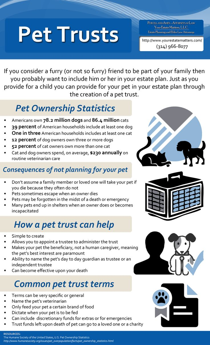 Pet Trusts Infographic by Purcell and Amen - Attorneys at Law, You Estate Matters LLC http://www.yourestatematters.com