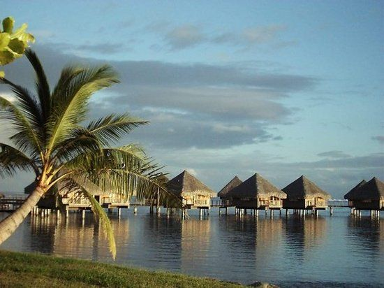 Tahiti Tourism: TripAdvisor has 20,374 reviews of Tahiti Hotels, Attractions…