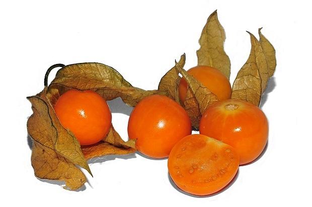 Altın Kadar Değerli: Altın Çilek..    Geçtiğimiz yıllarda adını sıkça duyduğumuz bir meyveydi. Her yerde herkesin üzerinde konuştuğu minik şifa deposu son zamanlarda unutulmuş gibi görünse de hatırı sayılır bir şifası mevcuttur.    Taze veya kurutulmuş olarak tüketilebilen altın çilek meyvesi, taze iken; pürüzsüz, parlak turuncu renkte, 2 cm çapında, sarı kağıdımsı bir dış yüzeye sahip olan içindeyse çok ufak sarı renkte çekirdekleri olan minik egzotik bir meyvedir.