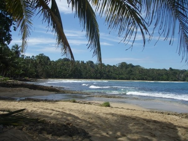 Beach near Cocles, Puerto Viejo, Costa Rica.  Amazing couple of months spent there, great beaches, jungle, people.