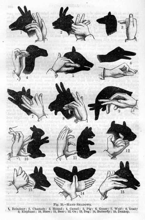 Hand shadows. Teek: I could have used these as a kid. Better late than never...