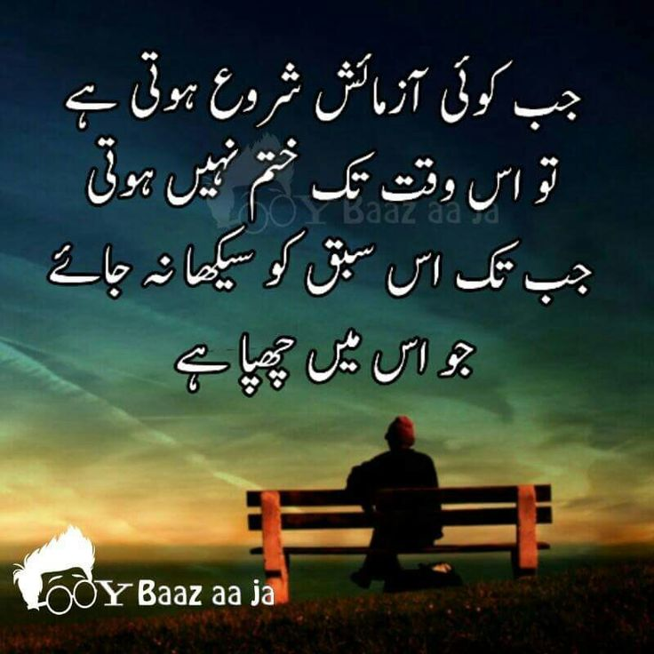 Best Poetry Quotes Of Love In Urdu: Beautiful Quotes On Love And Life In Urdu