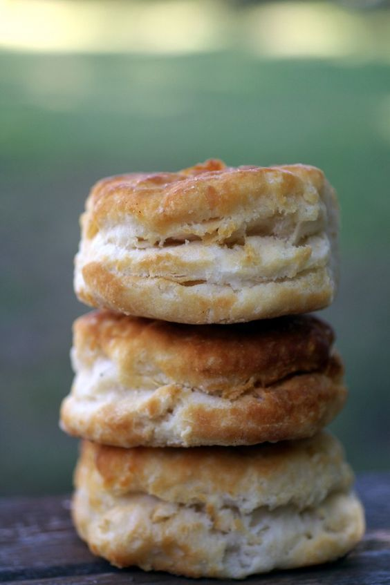 Buttermilk biscuits from the recipe she used at Hardees. Very simple just; 2 cups self rising flour 1/4 cup cold shortening 3/4 cup buttermilk I am substituting coconut oil for shortening to make them soy-free.