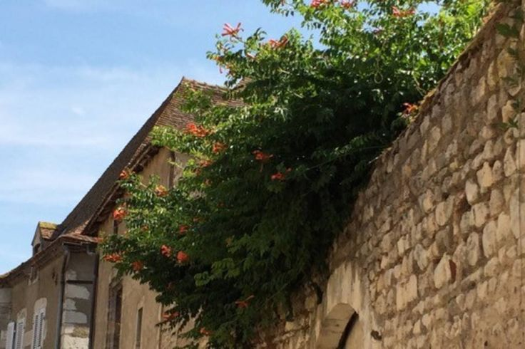 Regardez ce logement incroyable sur Airbnb : 19th century property near Vichy - maisons à louer à Ébreuil
