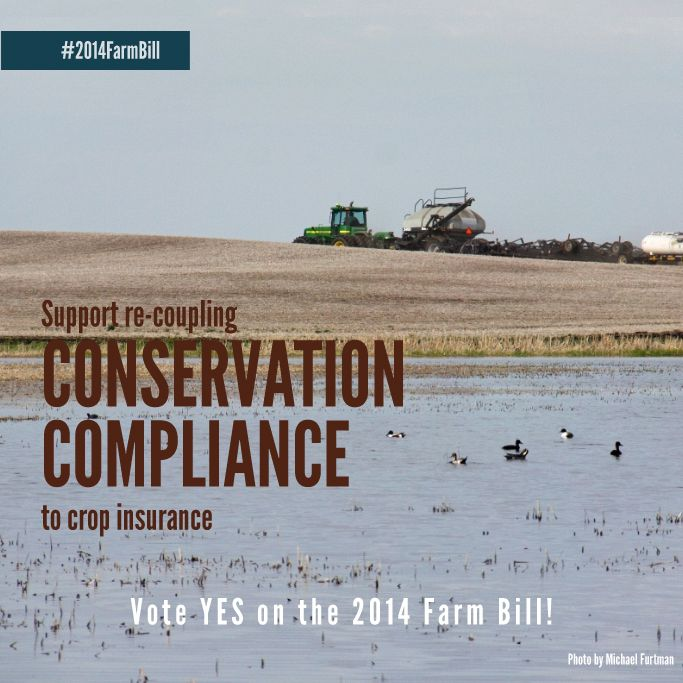 The proposed Farm Bill includes critical conservation measures that will help both farmers and wildlife. Tell Congress to pass it now!