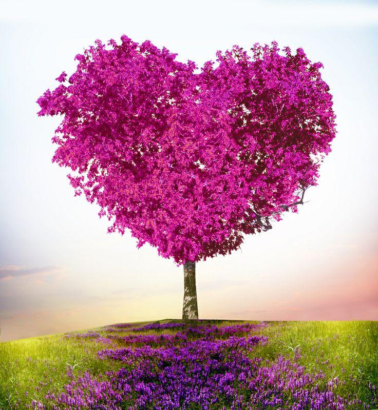 A čo milujete vy? http://zenysro.sk/#!detail/blogy/1733/Milujeme...