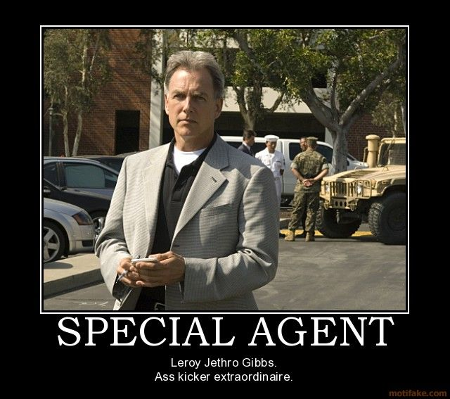 Leroy Jethro Gibbs/****Just about my favorite male TV star!