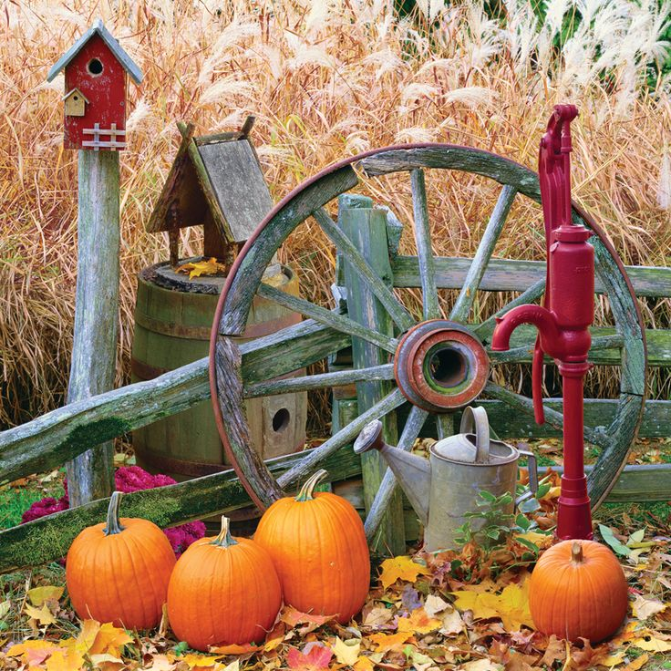 pumpkin harvest- LOVE the Wagon Wheel, Old fence, Bird house, watering can and Old Water Spigot Pump! This reminds me of Home where I grew up.