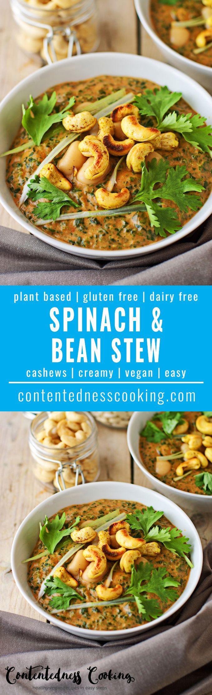 My Cashew Spinach Cannellini Bean Stew gives you a quick and easy infusion of healthy nutrients and amazing taste. It is vegan and gluten free, and will become an favorite in your home.