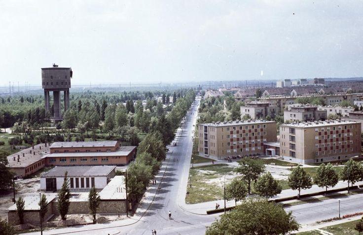 Építők útja a Garzonház (Nővérszálló) tetejéről nézve.