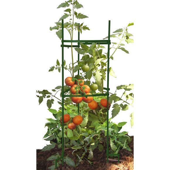 #saferbrand and #MyOrganicGardenWishList Garden Care, Stake It Easy™ Plant Staking System, STEZ1-1