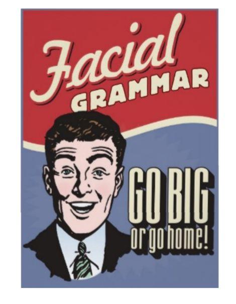 ASL Facial Grammar