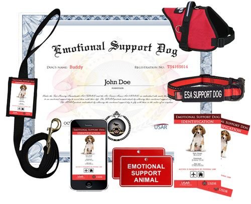 Service dog, emotional support dog, and therapy dog registration services and supplies.
