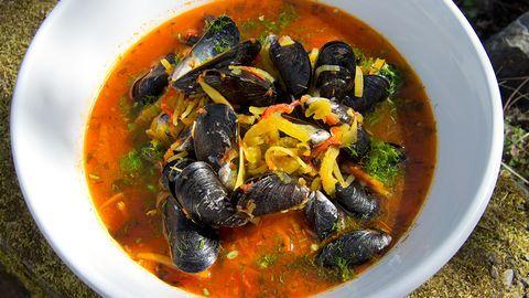 Musselsoppa med fänkål, saffran och rouille.