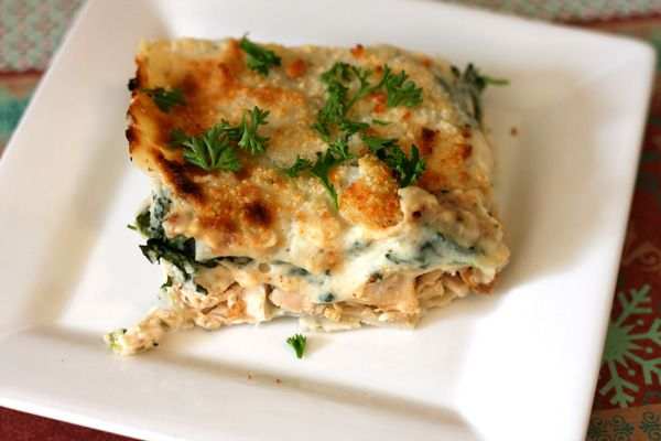 white cheese and chicken lasagna