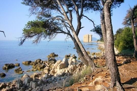 What to see in Cannes Ile Saint Honorat