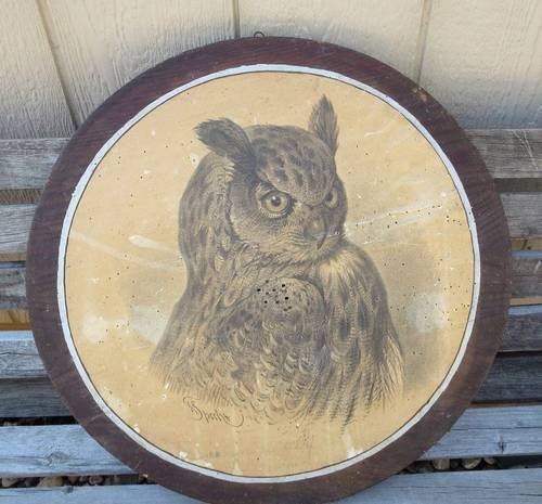 Antique German Black Forest Hunting Target Lithograph Owl Signed F. Specht RARE!